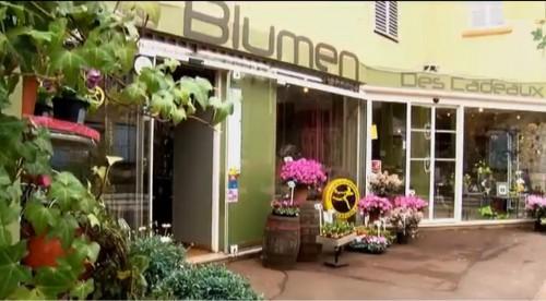 commerce,fleur,fleuriste,blumen,bellinda