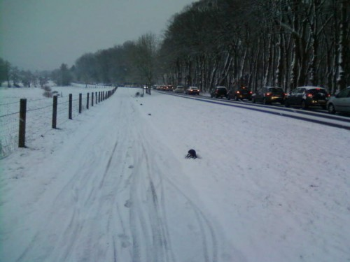 vélo,neige,embouteillage,gare