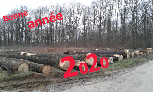 2020,election,municipale,hery,cattaneo,environnement,chevreuse,cchvc,casqy,voeux