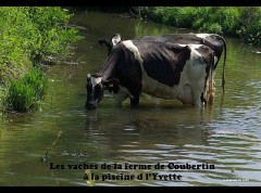 Saint-Remy-les-ChevreuseP9921-rot.jpg