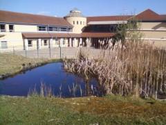 collège,biodiversité,spaak,mare,pédagogique,immeuble,insecte,mouton,bois,dépot,bus,savac,bay
