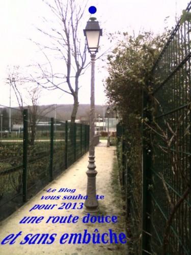 voeux,2013,chevreuse,embuche,route