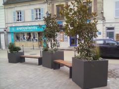 mobilier,urbain,centre ville,toutou,parkmetre,minute,banc,fleur