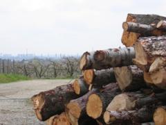 filière,energie,bois,chevreuse,pnr,parc,granulé,poele,chaudiere,chauffage
