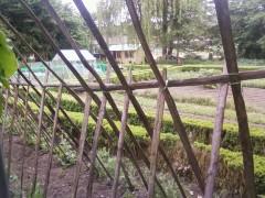 jardin,leguay,baudron,pédagogique,maquereau,kiwi